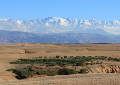 Yoga retreat Marrakech_Retreat Yourself_13
